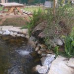kanatlı bahçem havuz