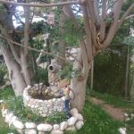 kanatlı bahçem akyaka