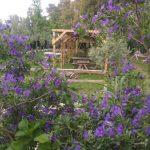 kanatlı bahçem bahar
